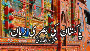 پاکستان کی بصری زبان