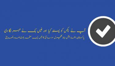پاکستان انفارمیشن اینڈ کلچرل سوسائٹی کا فیس بک صفحہ باقاعدہ تصدیق