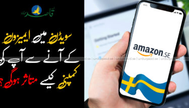 سویڈن میں ایمیزون کےآنے سے آپ کی کمپنی کیسے متاثر ہوگی؟