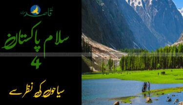 "پاکستان انفارمیشن اینڈ کلچرل سوسائیٹی کے زیرِ اہتمام  ""سلام پاکستان .۴ "" کا انعقاد"